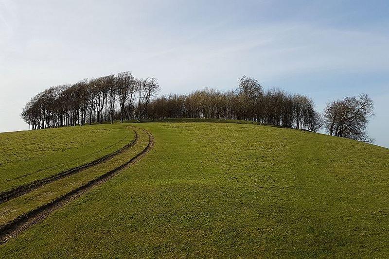 Ngọn đồi quỷ ám Chanctonbury Ring